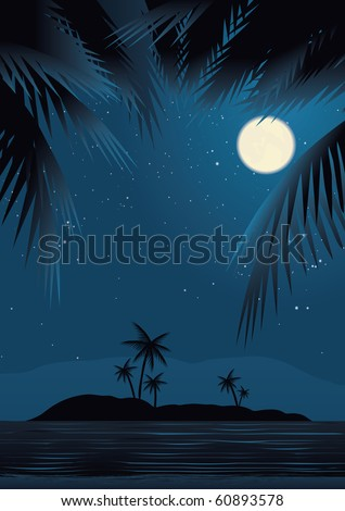 a tropical beach at night under