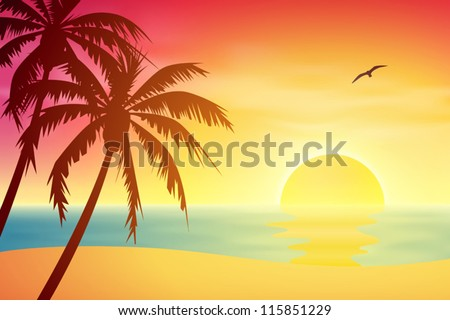 a tropical sunset  sunrise with