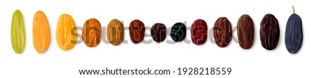 A variety of raisins. Row of dried grapes in different colors and sizes. White background. Top view. Realistic vector illustration Stock photo ©