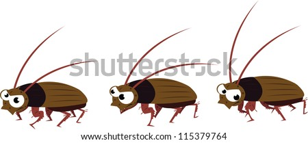 a vector cartoon representing a funny cockroach in different poses, while it's walking