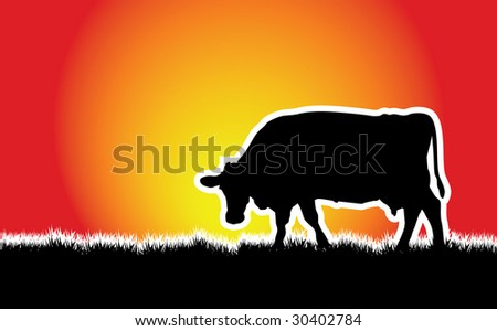 a vector cow walking on the grass sunset - stock vector