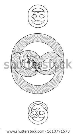 A vector illustration of a coiled Ouroboros snake eating it's own tail with  a pair of stylized ornaments.