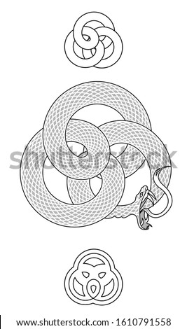 A vector illustration of a knotted Ouroboros snake eating it's own tail with  a pair of stylized ornaments.