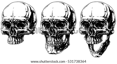 A vector illustration of cool black and white graphic detailed horror human skull set