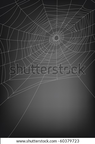 a vector illustration of spider web, with copy space. lines are not expanded so the thickness can be adjusted easily.