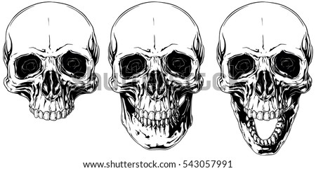 a vector illustration of white