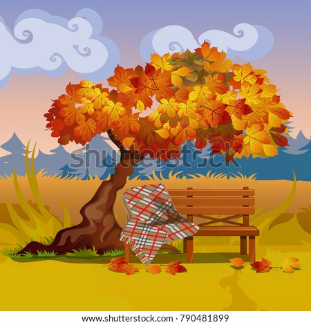 a wooden bench with a plaid