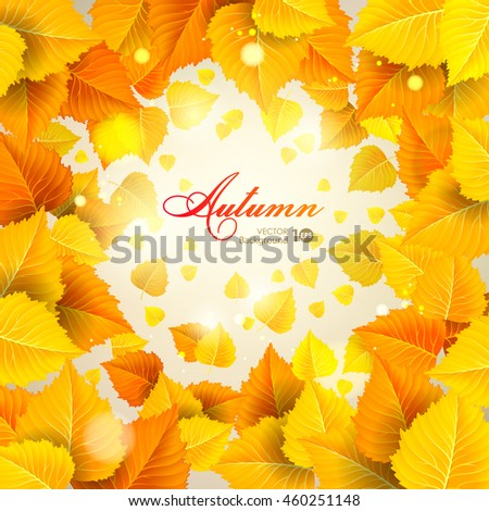 Abstract autumn background with leaves.