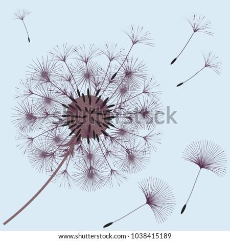 dandelion blowball vector flowers download free vector art stock