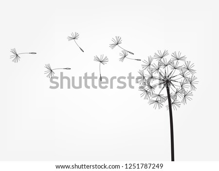 Abstract background of a dandelion for design. The wind blows the seeds of a dandelion. Template for posters, wallpapers, posters. Vector illustration
