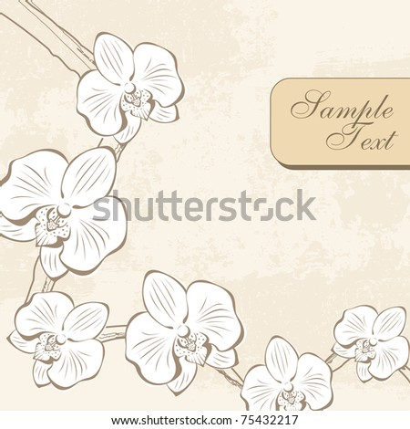 abstract background with orchid flower branch