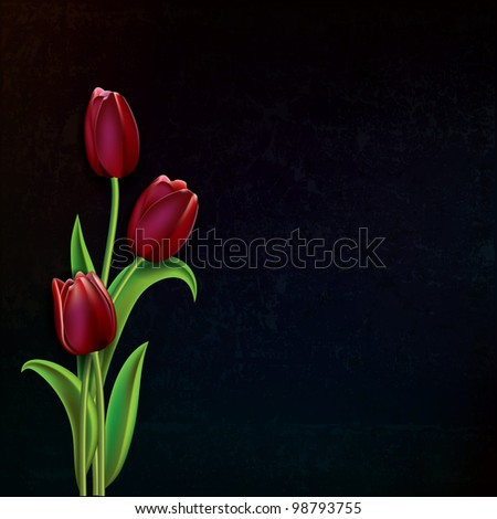 abstract black grunge background with red tulips - stock vector