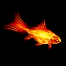 Abstract Burning fish, Illustration on black background