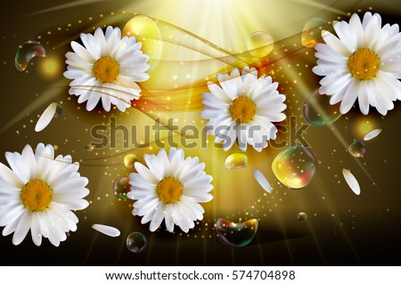Abstract Chamomile Flowers Natural Spring and Summer Background 3D Realistic Vector Iillustration EPS10