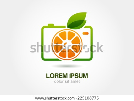 abstract colorful orange fruit