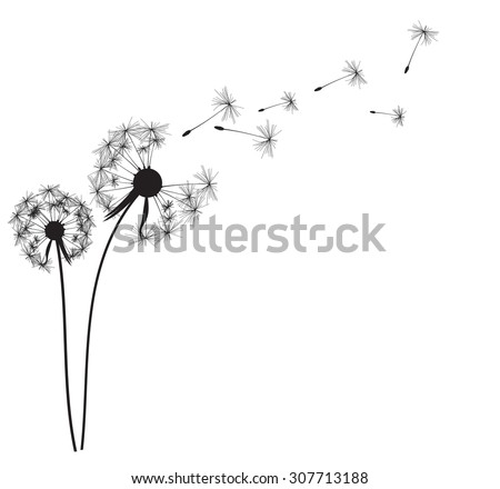 abstract dandelion background