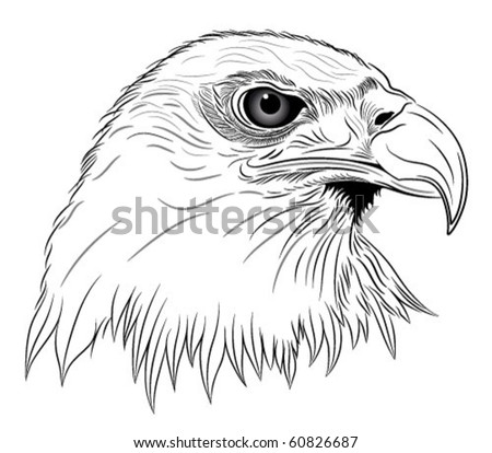 abstract eagle in the form of a