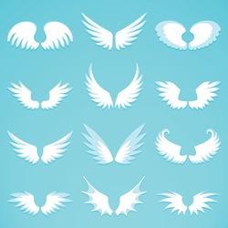 Abstract feather angel or bird wings icons set flat style