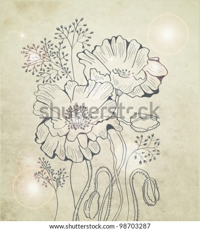 abstract floral poppy background, vector illustration