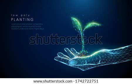 Abstract giving hand with young plant in soil. Low poly style design. Blue geometric background. Wireframe light connection structure. Modern 3d graphic concept. Isolated vector illustration.