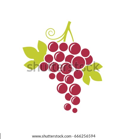 Abstract grape with leaves on white background. Red grape