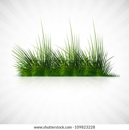 abstract green grass with reflection vector whit background illustration