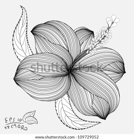 Abstract Hibiscus floral background. Element for design. EPS10 Vector