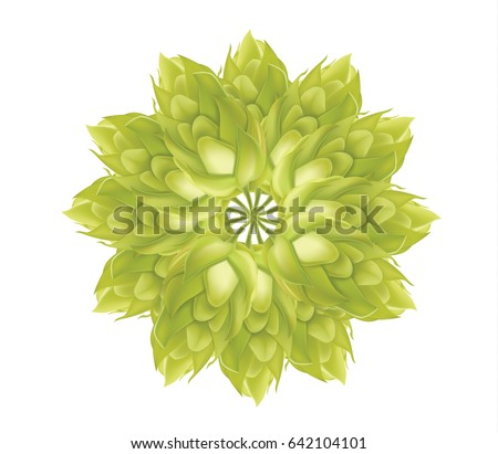 abstract hop flower plant 3d