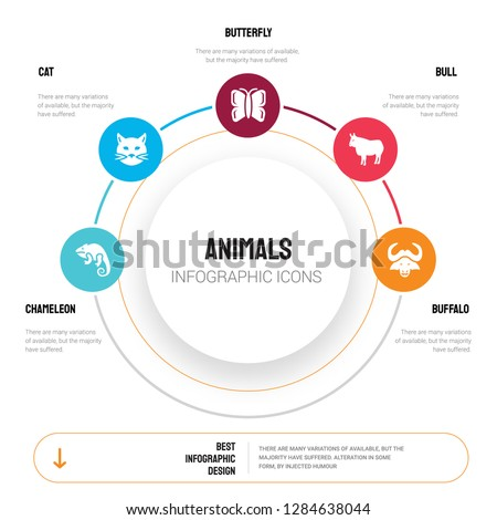 abstract infographics of