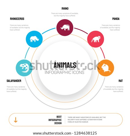Abstract infographics of animals template. salamander, Rhinoceros, Rhino, panda, Rat icons can be used for workflow layout, diagram, business step options, banner, web design.