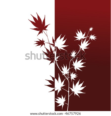 japanese maple leaf burn. Japanese maple leaf design