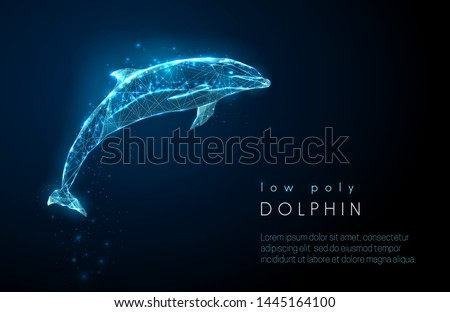 abstract jumping dolphin low