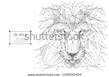 Abstract mash line and point Abstract vector image of lion origami on white background with an inscription. Lion's head Low poly wire frame illustration. Vector wild animal illustration