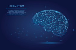 Abstract mash line and point human Brain. Low poly Neural network. IQ testing, artificial intelligence virtual emulation science technology concept. Brainstorm think idea vector illustration.