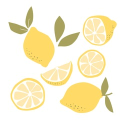 Abstract modern set of lemon fruit icon  isolated on white background. Vector hand drawn flat  illustration.   lemon logo design.