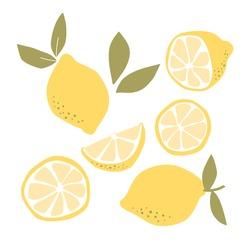 Abstract modern set of lemon fruit icon  isolated on white background. Vector hand drawn flat  illustration.   lemon logo design.