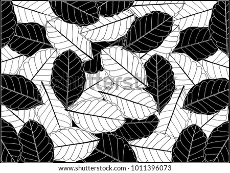 Black And White Floral Design Element Download Free Vector Art