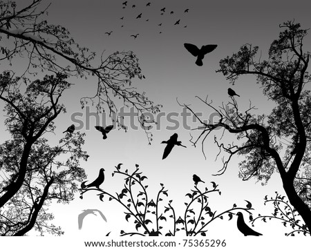 Abstract nature background with birds and trees, vector illustration