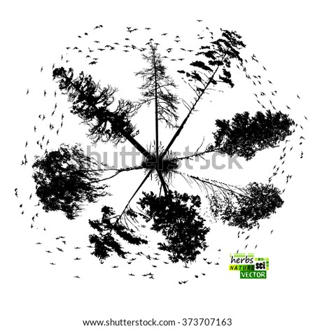 abstract of trees with birds