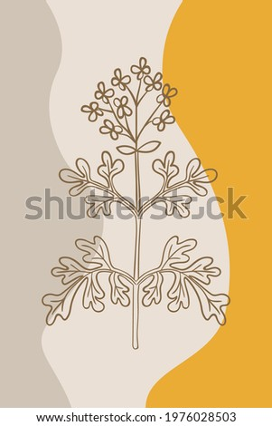 Abstract  posters with bitter herbs Herb-of-grace (Ruta graveolens), or common rue. Abstract geometric elements and flowers, leaves and berries. Great design for social media, postcards, print. Foto stock ©