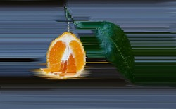 Abstract red orange. Impressionism with fruit. Blur in still life. Abstract Still Life.