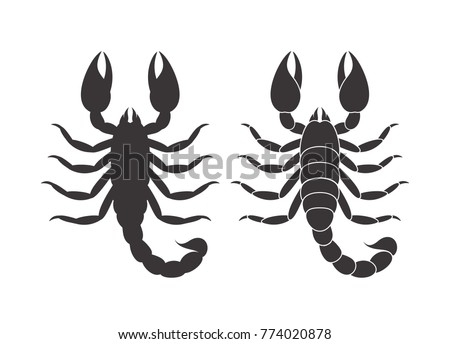 abstract scorpion isolated