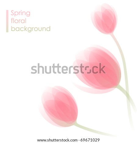 Abstract spring background with delicate tulip flowers - stock vector