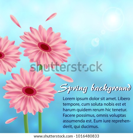 Abstract spring background with gerberas #1016480833