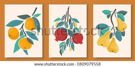Abstract still life in pastel colors posters. Collection of contemporary art. Abstract elements, fruits for social media, postcards, print. Hand drawn pear, pomegranate, tangerine, orange branches.