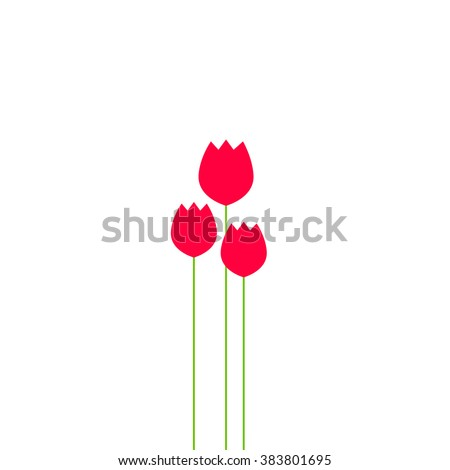 abstract tulips flowers bouquet
