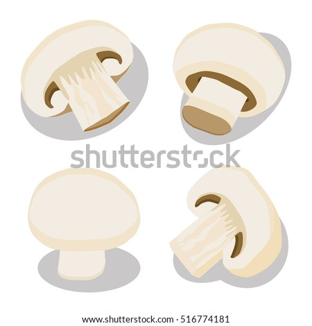 Abstract vector icon illustration logo for whole ripe mushroom champignon, slice fungi. Mushroom pattern consisting of tasty raw food, color label. Eat fresh organic greenhouse champignons mushrooms.