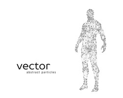 Abstract vector illustration of human body on white background