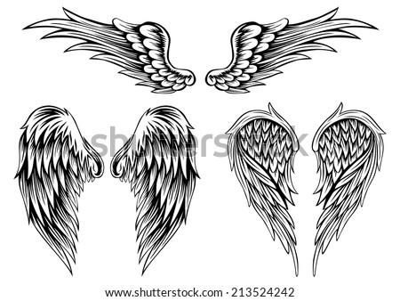 feathered wing set free photoshop brushes at brusheezy