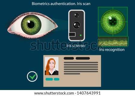 Abstract vector infographics: Iris scan - biometric authentication method diagram. Method is used to person identify, access control, in security systems